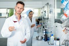 Man att kontrollera kvalitet av vin i kemiskt laboratorium arkivfoton