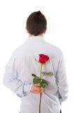 Man att rymma en enkel röd ros bak hans baksida Royaltyfri Foto