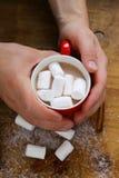 Man att rymma en varm kakao för råna med marshmallower, jul dricker Arkivfoto