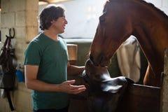 Man att smeka den bruna hästen i stallet Arkivbilder