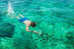Man att snorkla på Phi Phi Island, Phuket, Thailand Royaltyfria Bilder