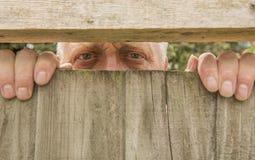 Man att spionera till och med ett trästaket i trädgården fotografering för bildbyråer