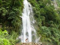 Man att ta en dusch under vattenfallet i Nepal Royaltyfria Bilder
