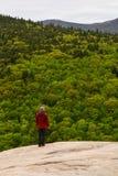 Man att tycka om den härliga sikten som förbiser berg av den vintergröna skogen arkivfoton