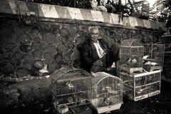 Man av fågelmarknaderna av Malang, Indonesien royaltyfri fotografi