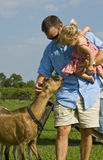 Man and baby with goat Stock Image