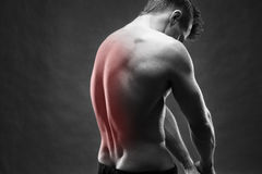 Man with backache. Pain in the human body. Muscular male body. Handsome bodybuilder posing on gray background. Black and white photo with red dot Royalty Free Stock Photography