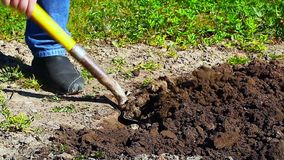 Man backfilled ground Royalty Free Stock Image
