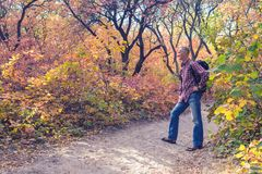Man with backpack among colorful autumn leaves. Man with backpack stands on a trail in forest, among colorful autumn leaves, in a wonderful sunny day. Amazing Royalty Free Stock Photo