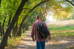 A man with a backpack goes on a forest road surrounded by trees Stock Photography