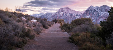 A Man backpack in the Redrock Canyon National Park with snow and. Sunset, Las Vegas royalty free stock image