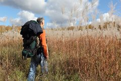 Man with a backpack walking across a field with tall grass Stock Photos