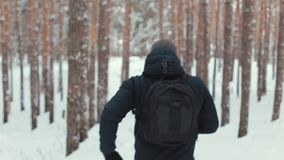 Man with a backpack walking through forest. Man travels through the woods stock video