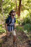 Man with backpack walking in the forest Royalty Free Stock Photos