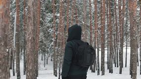 Tourist travels through the woods. Man with a backpack walking through forest stock video