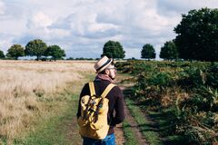 Man With Backpack Walking on Pathway Between Field at Daytime Royalty Free Stock Images