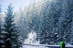 Man backpacker walking in winter mountain forest Stock Images