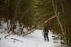 Man is backpacking in winter forest Stock Photo