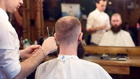 Man barber cutting hair with scissors in male hair salon. Cropped male client sitting back. Blurred reflection in mirror. Man barber in action. Focus on cutting stock video