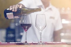 Man bartender pours wine into a wine glass stock photos