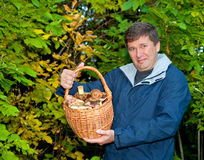 Man with basket of mushrooms Stock Photos