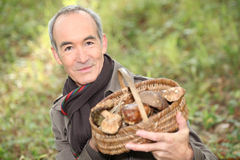 Man with  basket of mushrooms Royalty Free Stock Images