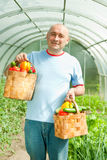 Man with baskets of   vegetables Stock Images