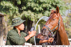 Man Bathe horse with horse Royalty Free Stock Image