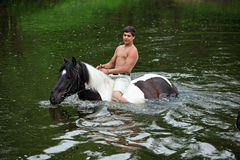 Man bathes horse in the river Royalty Free Stock Image