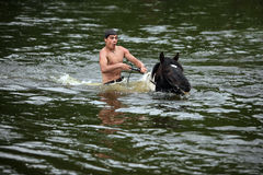 Man bathes horse in the river. Young man astride horse go down the river Stock Image
