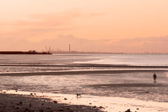 Man on beach walking dog at sunset. Man on beach at sunset, walking his dog, with oil refinery and other heavy industry in the background Royalty Free Stock Image