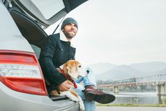 Man with beagle dog siting together in car trunk. Late autumn ti stock images