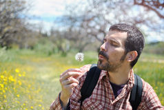 Man with Beard Blowing a Dandelion. Young Bearded Man in Nature Blowing a Dandelion Royalty Free Stock Photos