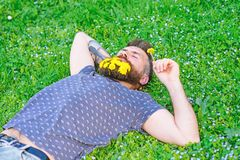 Man with beard on calm face enjoy nature. Bearded man with dandelion flowers lay on meadow, grass background. Unite with. Nature concept. Hipster with bouquet stock photos