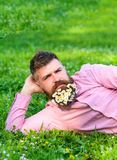 Man with beard on calm face enjoy nature. Relaxation concept. Hipster with bouquet of daisies in beard relaxing. Bearded. Man with daisy flowers in beard lay on Royalty Free Stock Photos
