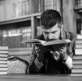 Man with beard in classic suit, scientist or professor sniffs. Smell of antique book in library near pile of books, bookshelves on background, defocused stock photos