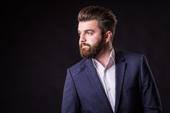 Man with beard, color portrait royalty free stock photo
