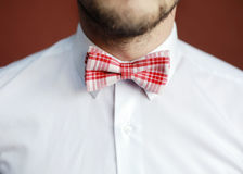 Man with beard correcting his bowtie Royalty Free Stock Photography