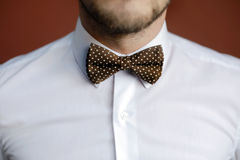 Man with beard correcting his bowtie Stock Photography