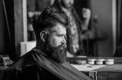 Man with beard covered with black cape sits in hairdressers chair, mirror background. Hipster with beard waits for. Barber and haircut. Man with beard client of stock photo