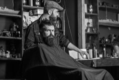 Man with beard covered with black cape waiting while barber changing clipper grade. Hipster client getting haircut. Client with beard ready for trimming or royalty free stock photos