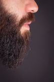 Man with beard. Detail of man with beard Stock Image