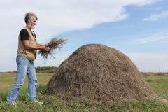 Man with a beard forming a haystack in the field Royalty Free Stock Photos