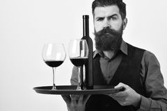 Man with beard holds alcohol on white background. Waiter with tray, bottle and glass of red wine. Service and restaurant catering concept. Barman with serious Royalty Free Stock Photo