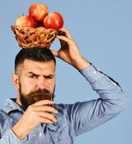 Man with beard holds wicker bowl of fruit and juice on blue background. Farmer with busy face drinks apple juice and Stock Photography