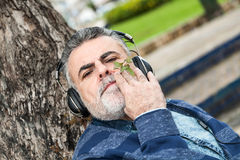 Man with beard listening to music. In a park Stock Images