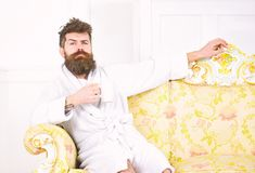 Man with beard and mustache enjoys morning while sitting on luxury sofa. Elite leisure concept. Man on sleepy face in. Bathrobe, drinks coffee, in luxury hotel stock image