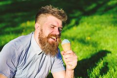 Man with beard and mustache on happy face eats ice cream, grass on background, defocused. Man with long beard enjoy ice. Cream, while sits on grass. Delicacy royalty free stock photo