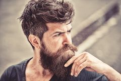 Man with beard and mustache looks thoughtful or troubled Bearded man on concentrated face touches beard. Hipster with stock photos