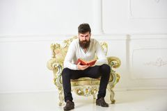 Man with beard and mustache sits on armchair and reading book, white wall background. Scientist, professor on serious. Face explores literature. Macho smart royalty free stock photo